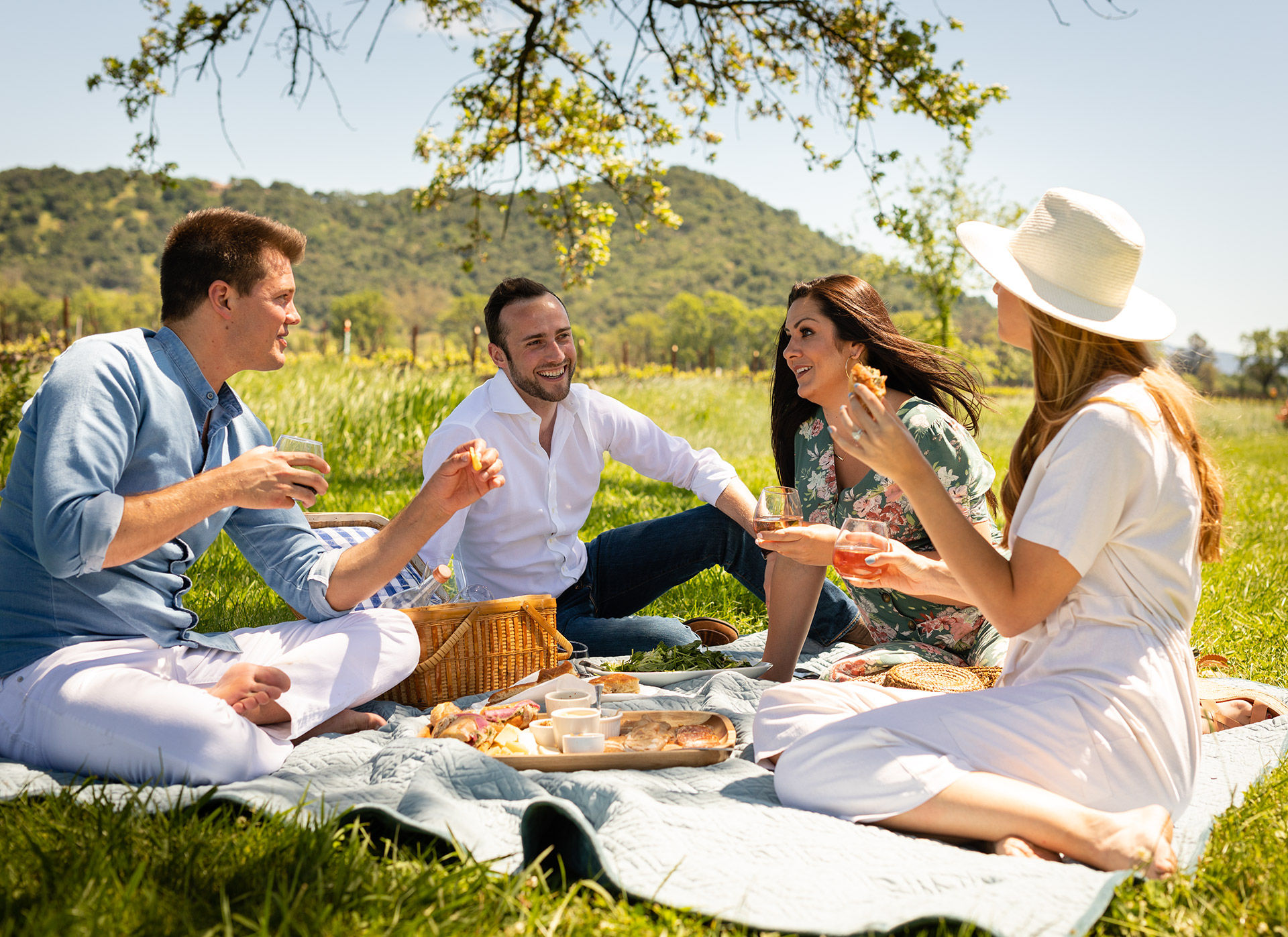 Wine Lifestyle  Pic Nic in Napa Valley
